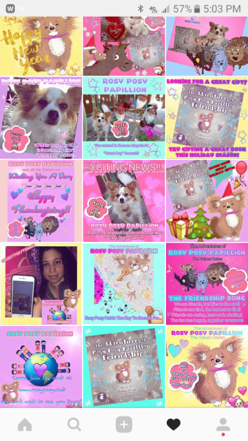 Screenshot_Rosy Posy Collage